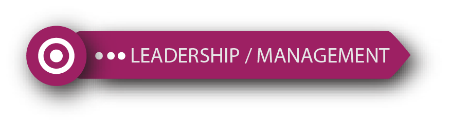 Development Stack - Leadership / Management industry